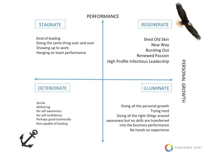 Performance graphically represented